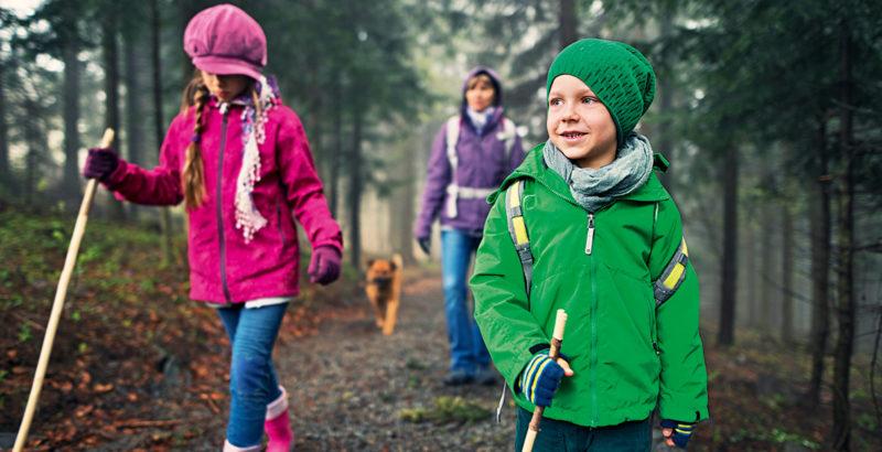 Zwei Kinder, ihre Mutter und ein Hund beim Wandern in einem nebligen Wald.